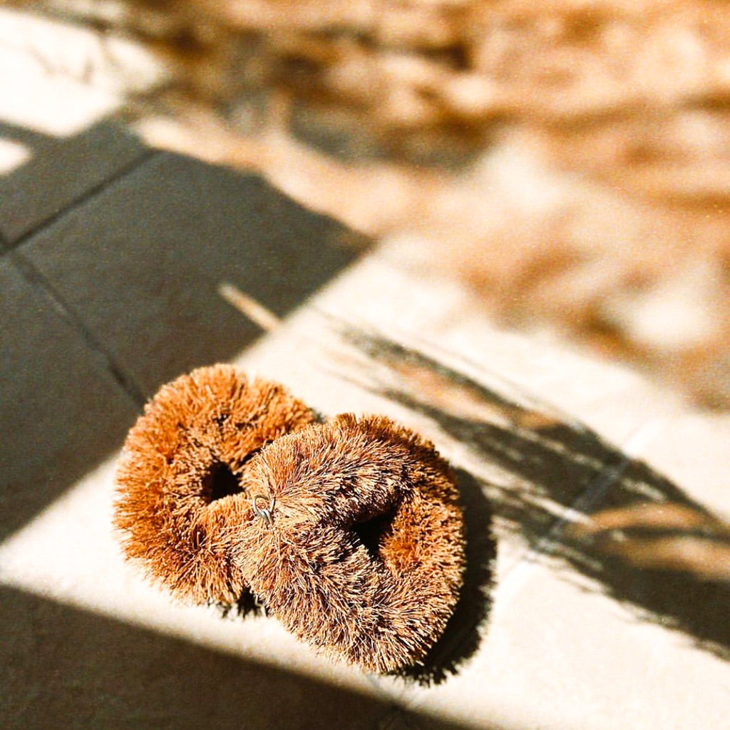 COCONUT COIR BRUSH