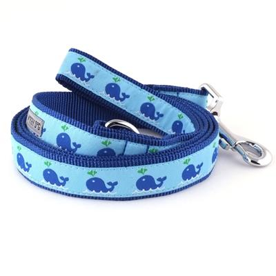 Squirt Collar & Lead Collection