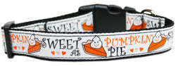 Sweet as Pie, Pumpkin Pie Nylon And Ribbon Collar and Leash from StayGoldenDoodle.com