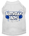 Birthday Boy Screen Print Shirts - Stay Golden Doodle