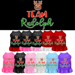 Team Rudolph Screen Print Ruffle Dress