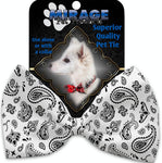 White Western Pet Bow Tie - staygoldendoodle.com