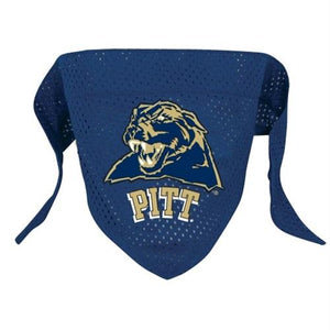 Pittsburgh Panthers Pet Mesh Bandana - staygoldendoodle.com