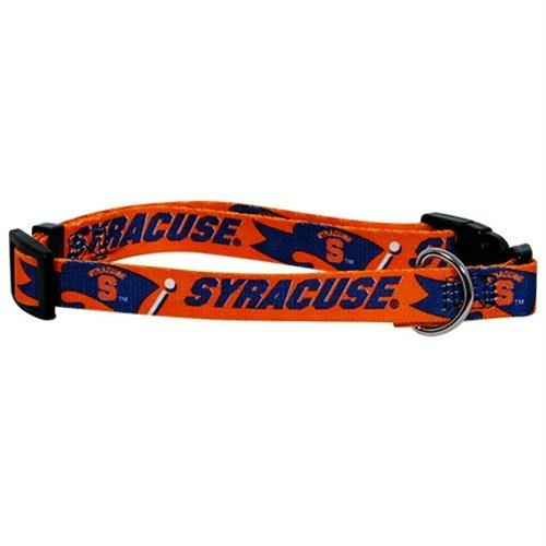 Syracuse Orange Pet Collar - staygoldendoodle.com