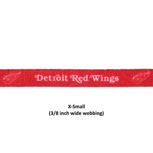 Detroit Red Wings Nylon Collar - staygoldendoodle.com