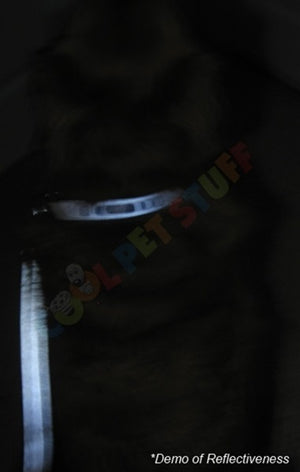 Florida State Seminoles Reflective Football Pet Leash - staygoldendoodle.com