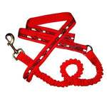 Arkansas Razorbacks Bungee Ribbon Pet Leash - staygoldendoodle.com