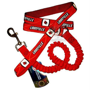 Louisville Cardinals Bungee Ribbon Pet Leash - staygoldendoodle.com