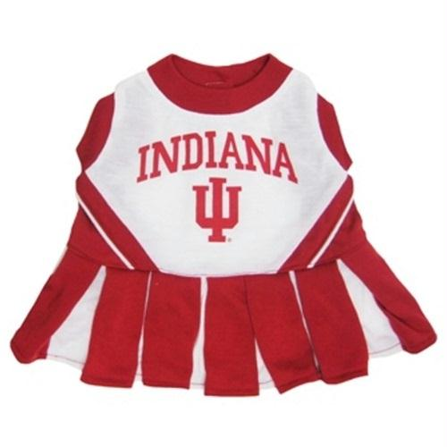 Indiana Hoosiers Cheerleader Pet Dress - staygoldendoodle.com