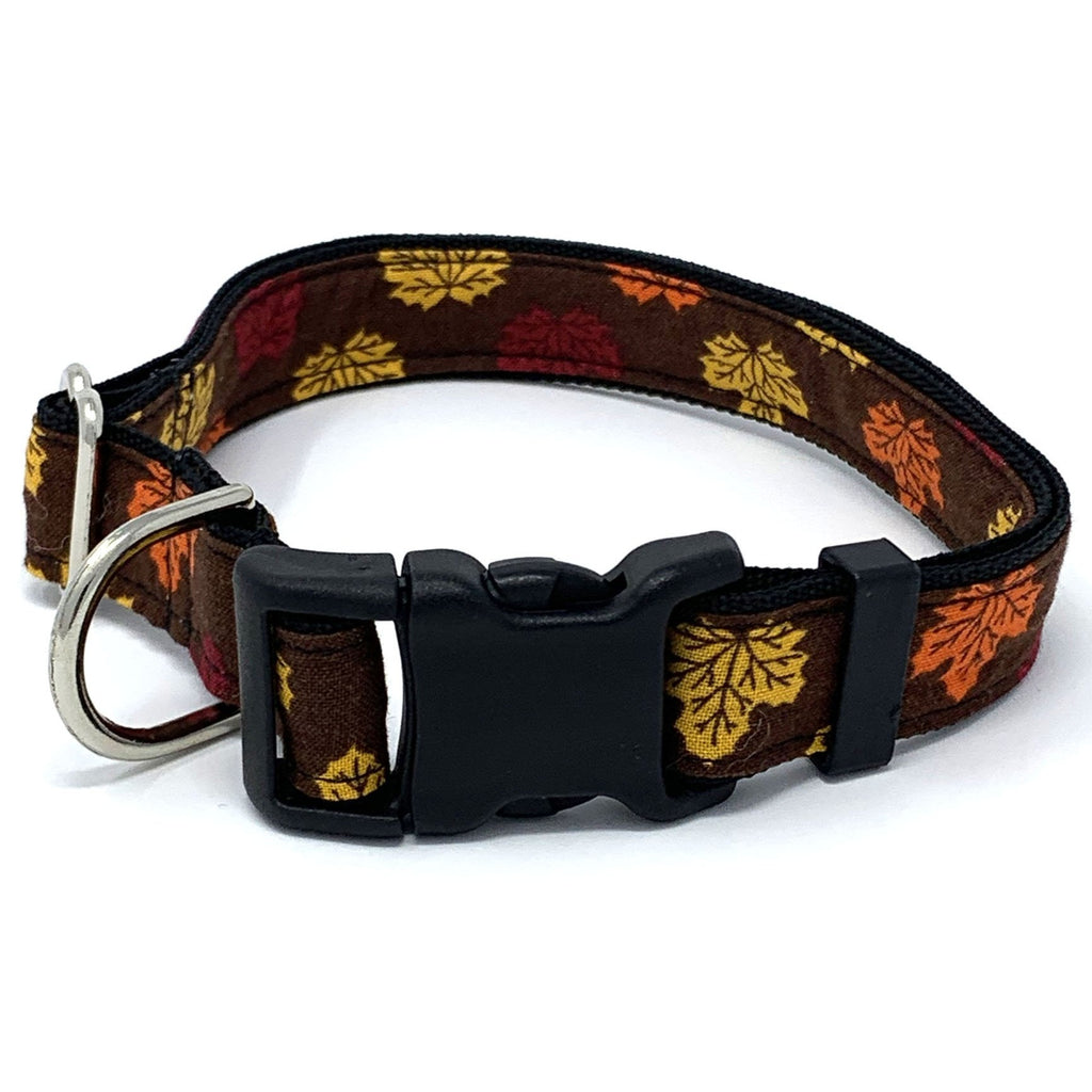 Autumn Leaf Dog Collar