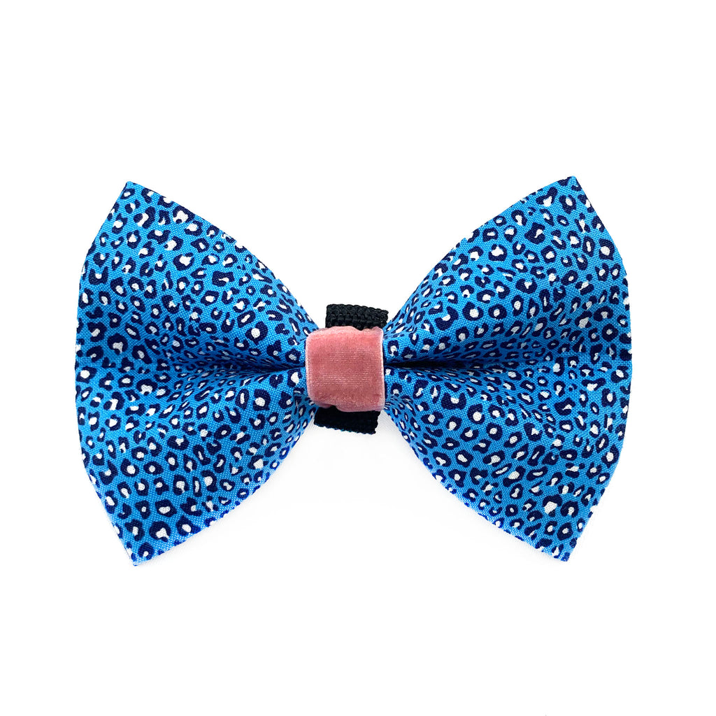 Think Pink Dog Bow Ties - Blue Cheetah Print Dog Bow Tie + Daisy Pink Dog Bow Tie