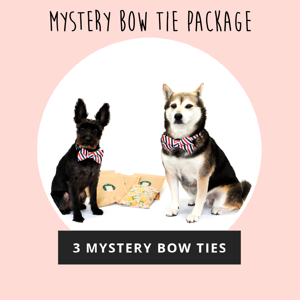 Mystery Bow Tie Package