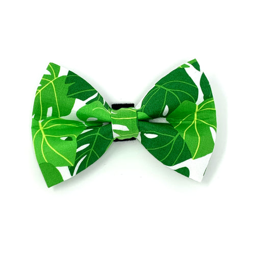 Monstera Dog Bow Tie