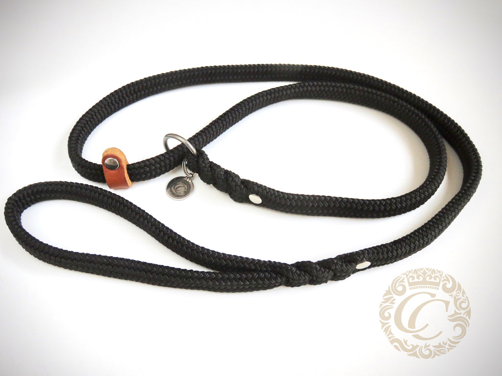 Dog slip leash CollarCrafts