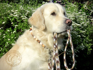 Leashes CollarCrafts