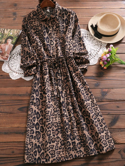 Leopard Printed A-Line Long Sleeve Dress