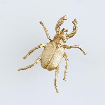 Stag Beetle Pin