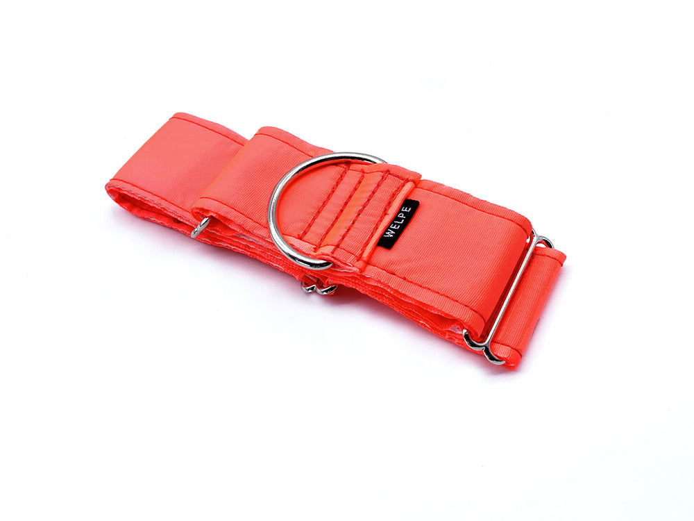 COLLAR MARTINGALE CORAL