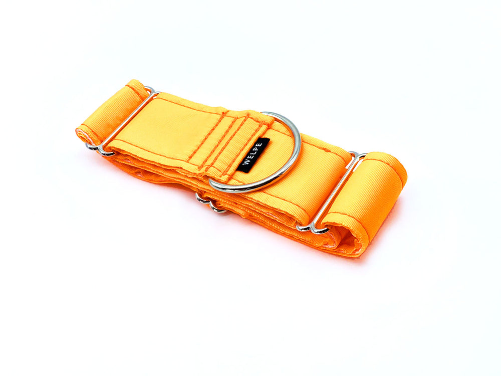 COLLAR MARTINGALE ORANGE
