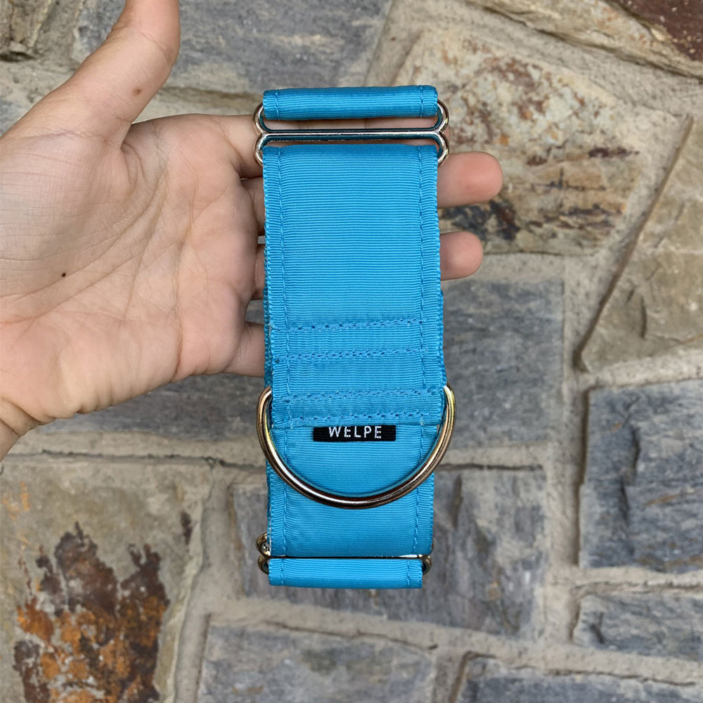 COLLAR MARTINGALE TURQUOISE