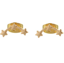 Load image into Gallery viewer, Aurora Starlet Earrings - palmpé
