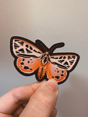 Grammia doris Sticker