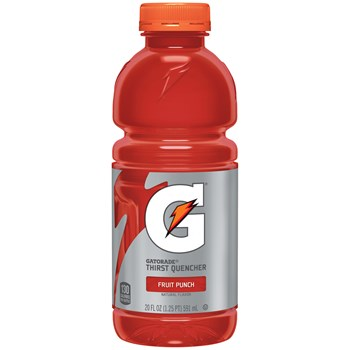 Gatorade Fruit Punch 20oz/ 24 count