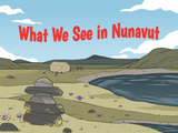What We See in Nunavut