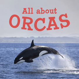 All About Orcas