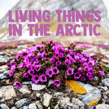 Living Things in the Arctic