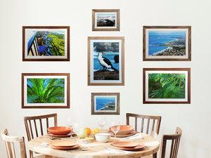 Gallery Photo Frames in Recycled Timber and White mats, made in Australia