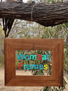 Wombat Frames A4 Recycled Brown Gum Picture Frames