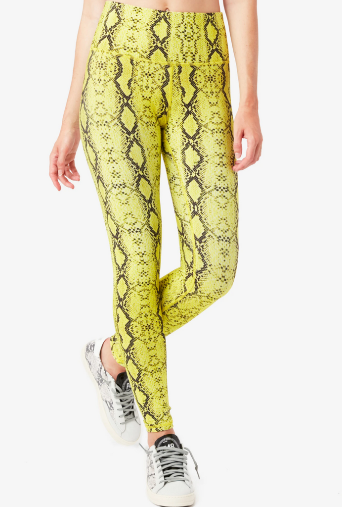 Terez Lime Python High Rise Double Knit Leggings