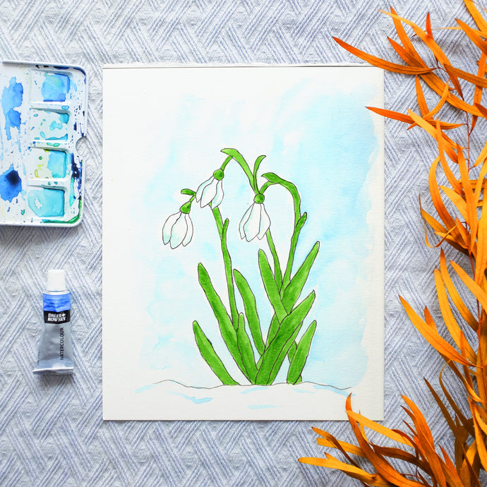 Watercolor Template - Snowdrop Flowers