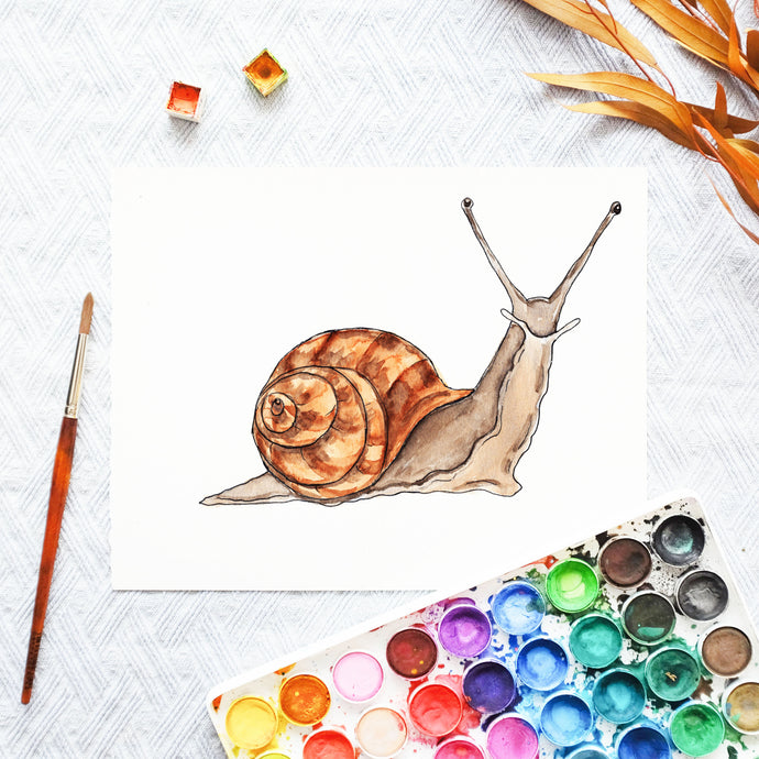 Watercolor Template - Snail