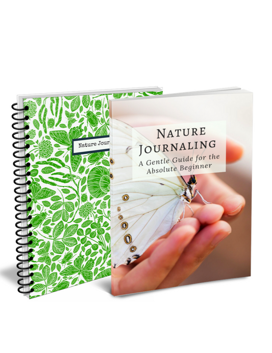 Nature Journaling Bundle