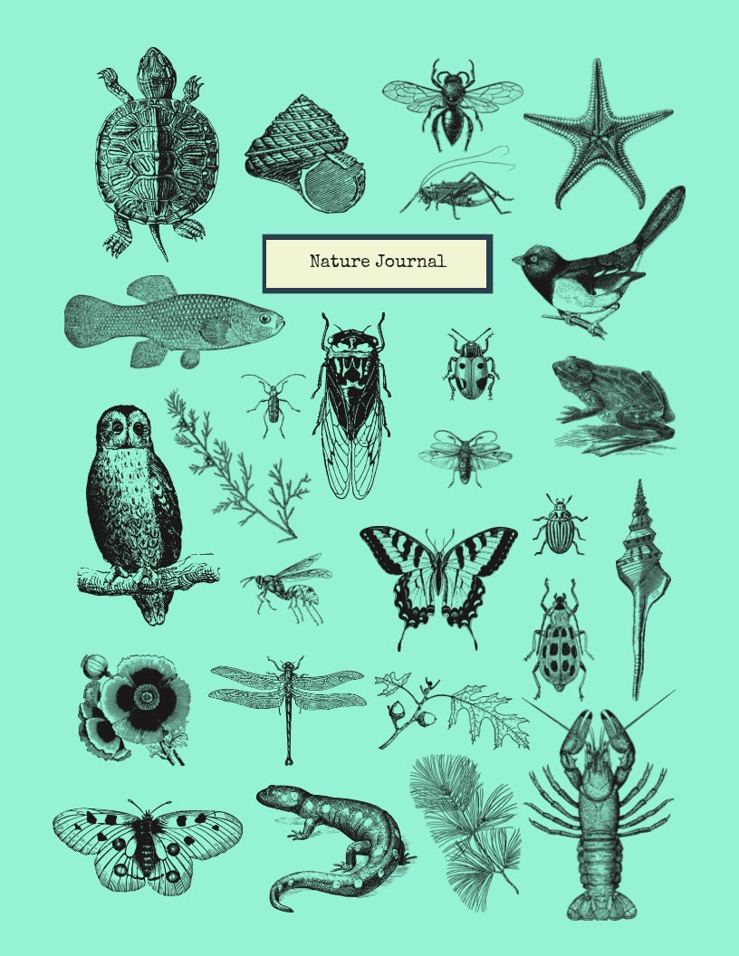 Nature Journal with Reference Sheets PDF Instant Download
