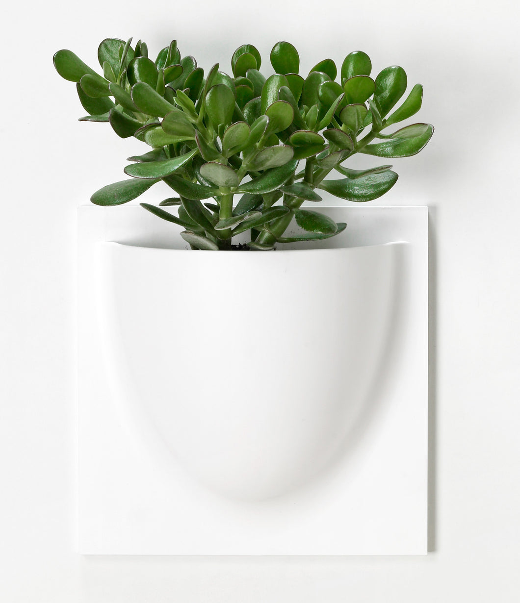 Verti Plants Bio Wall Planter - Black, White, Grey