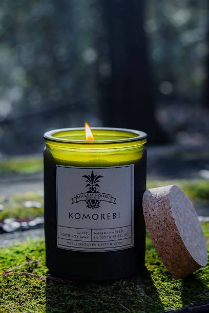 KOMOREBI, THE INTERPLAY BETWEEN LIGHT AND LEAVES WHEN SUNLIGHT SHINES THROUGH TREES