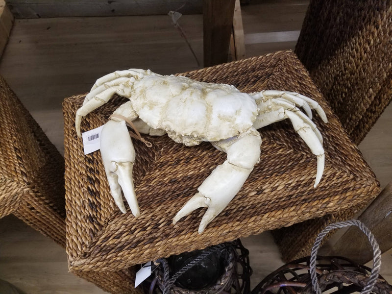 shop local treasures white resin sea crab
