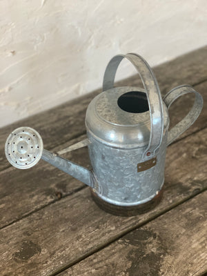petite galvanized watering can