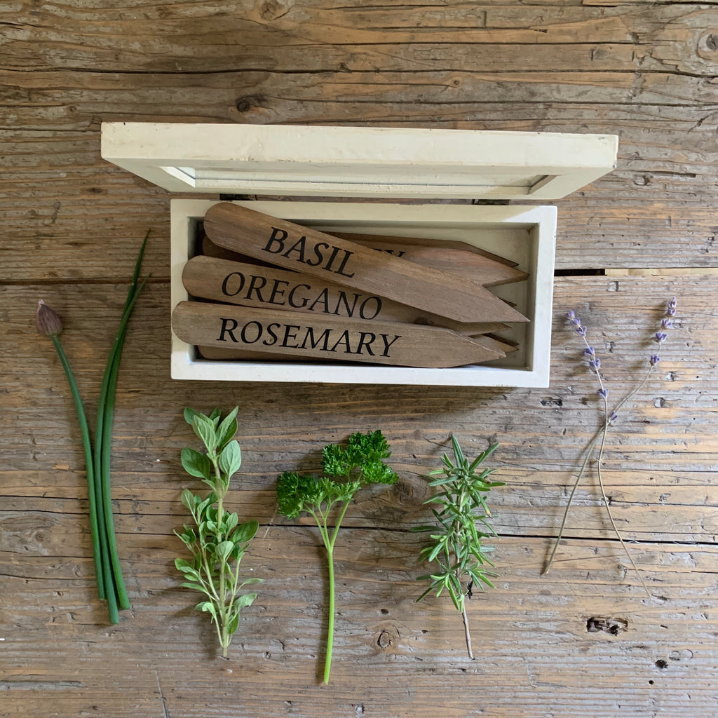 herbal plant stakes + storage box