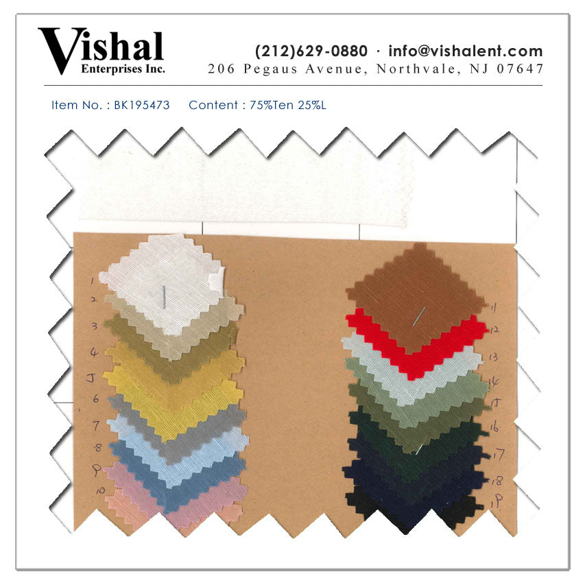 BK195473 - Vishal Enterprises Inc