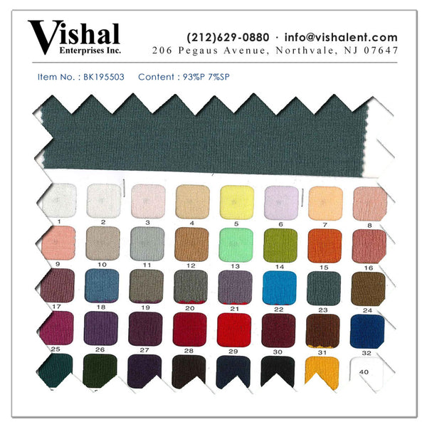 BK195503 - Vishal Enterprises Inc