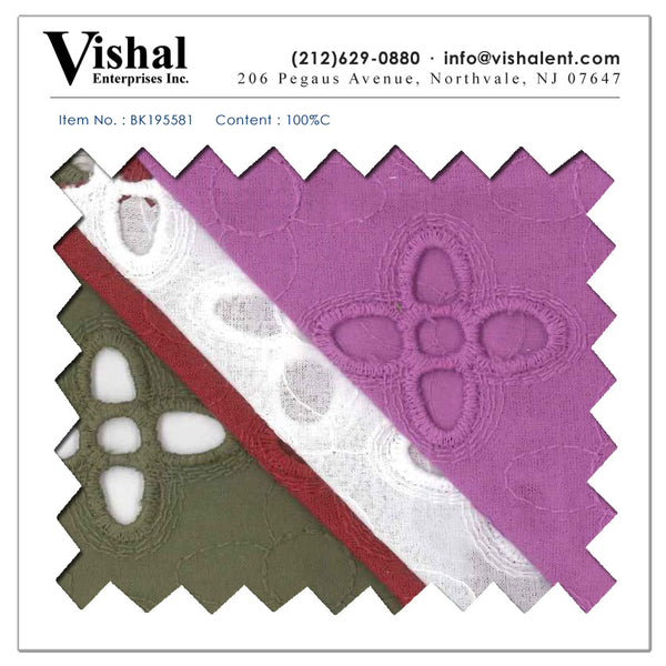 BK195581 - Vishal Enterprises Inc