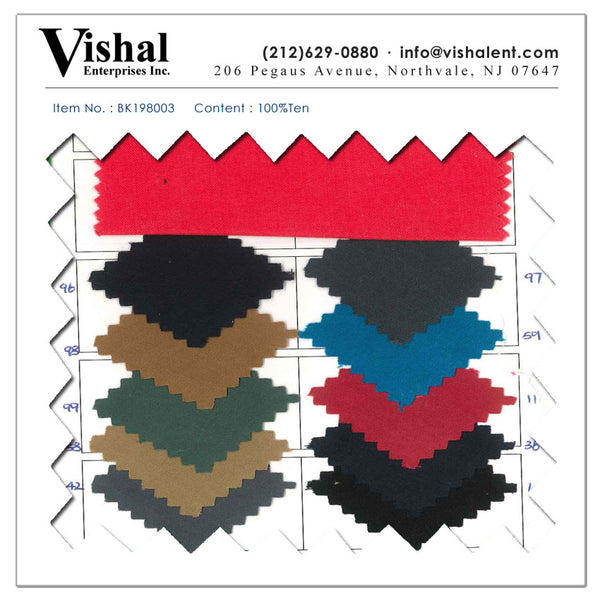 BK198003 - Vishal Enterprises Inc