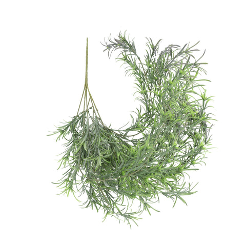Leaf & Living Rosemary Hanging Plant
