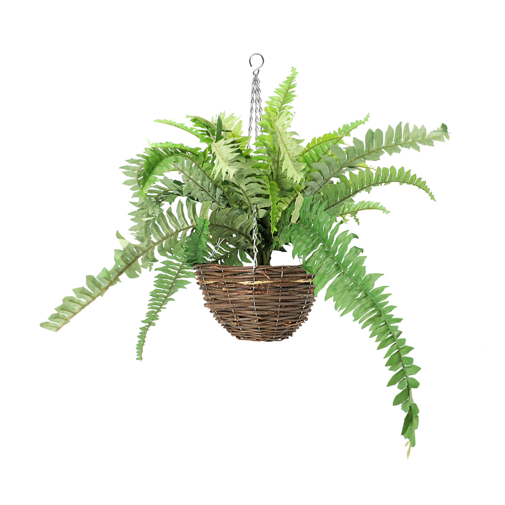 Leaf & Living Sword Fern Basket