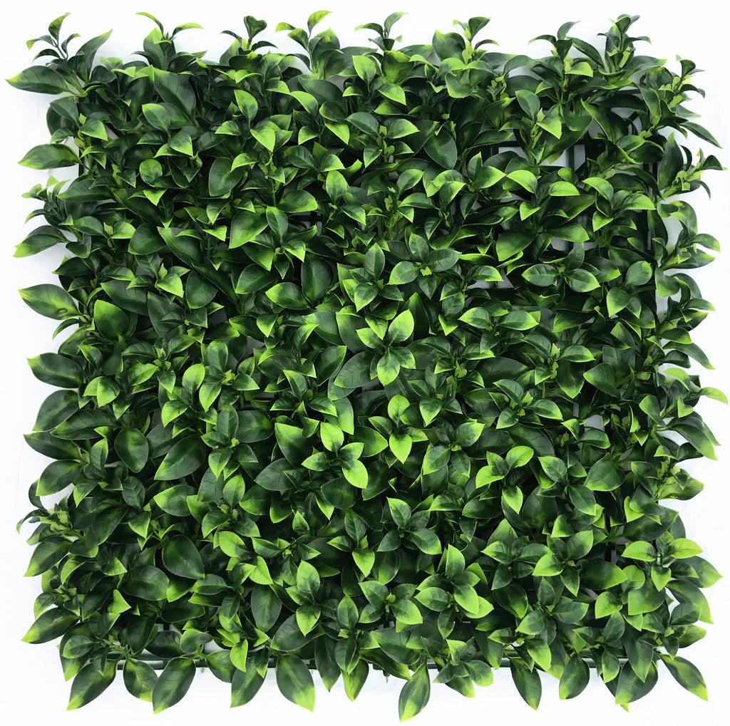 Leaf & Living Star Jasmine Artificial Hedge