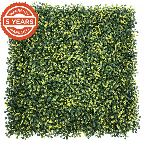 Artificial hedge box leaf yellow